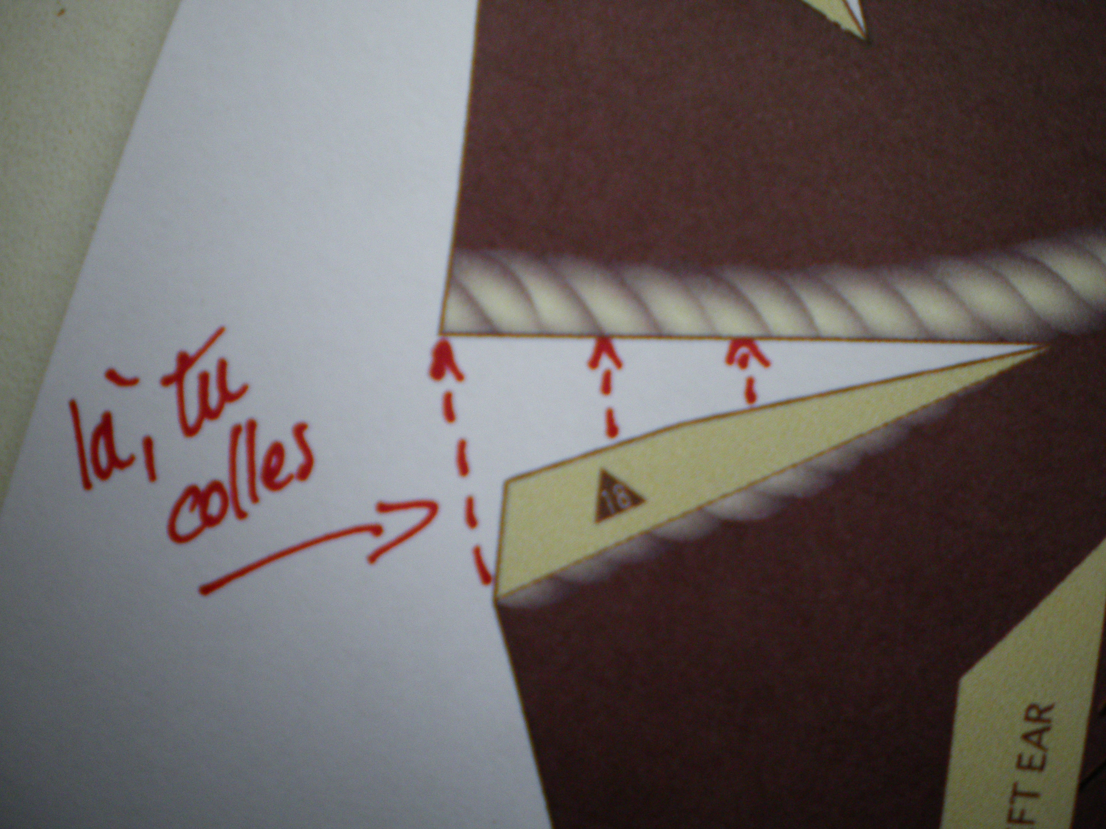 craftpaper037.jpg